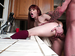 Alexa Nova gets fucked in the ass by her neighbor in the kitchen