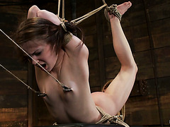 Adorable slave Sensi Pearl takes brutal bondage and Hitachi massager punishment