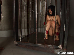 Bondaged Asian slave Yukino Chitose is hate fucked by master