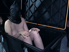 Beautiful Electra Rayne gets tied up and punished with a dildo