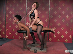 Ebony Nikki Darling sucks master's cock and gets straponed by a mistress